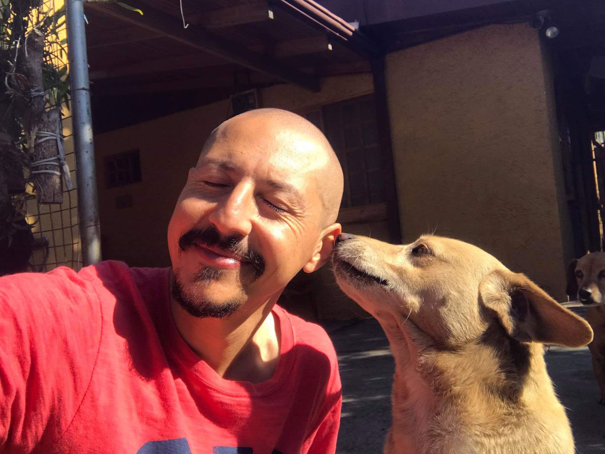 コスタリカと犬